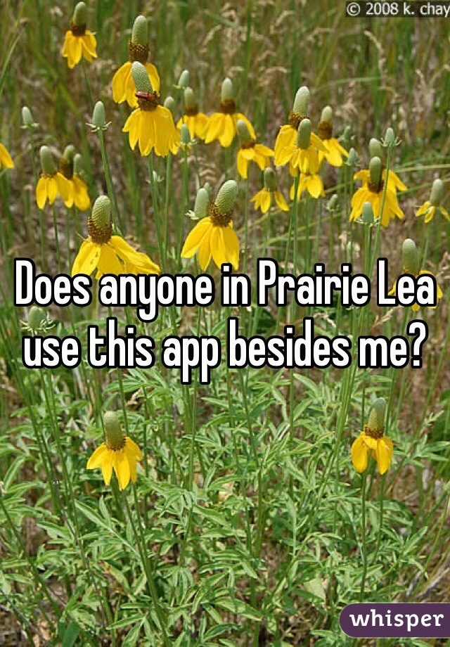 Does anyone in Prairie Lea use this app besides me?