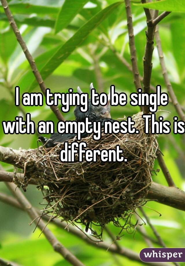 I am trying to be single with an empty nest. This is different.