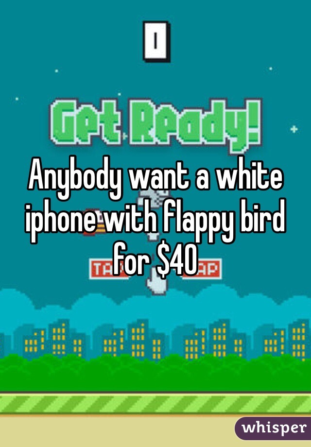 Anybody want a white iphone with flappy bird for $40