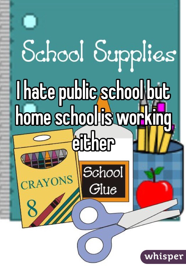 I hate public school but home school is working either