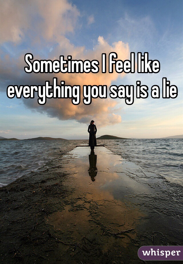 Sometimes I feel like everything you say is a lie