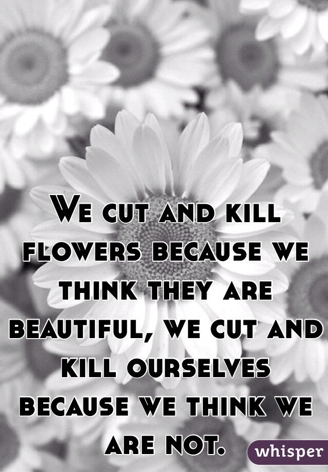We cut and kill flowers because we think they are beautiful, we cut and kill ourselves because we think we are not.