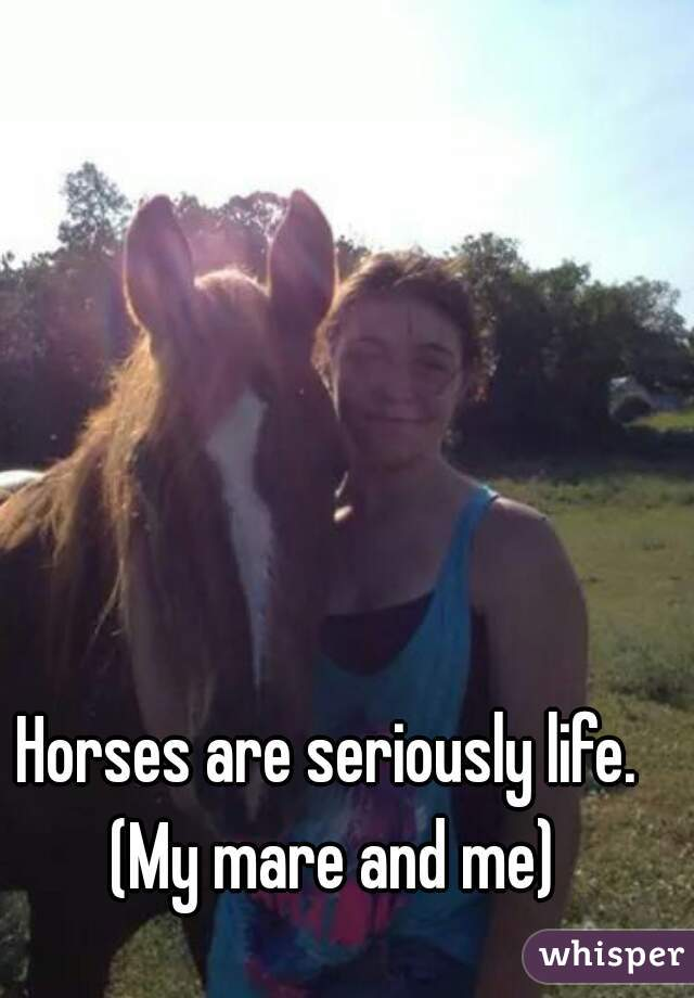 Horses are seriously life. (My mare and me)