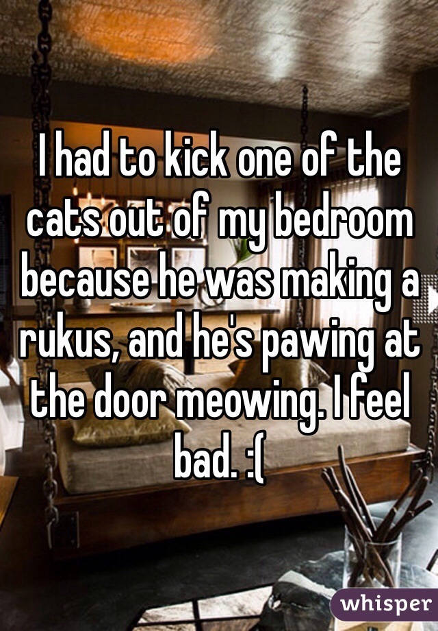 I had to kick one of the cats out of my bedroom because he was making a rukus, and he's pawing at the door meowing. I feel bad. :(