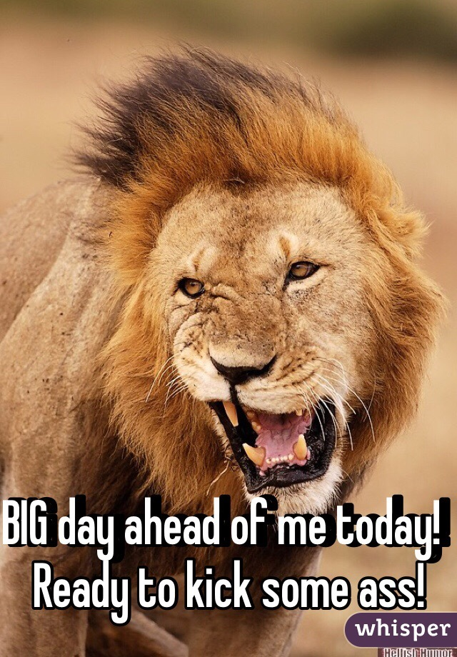BIG day ahead of me today!  Ready to kick some ass!