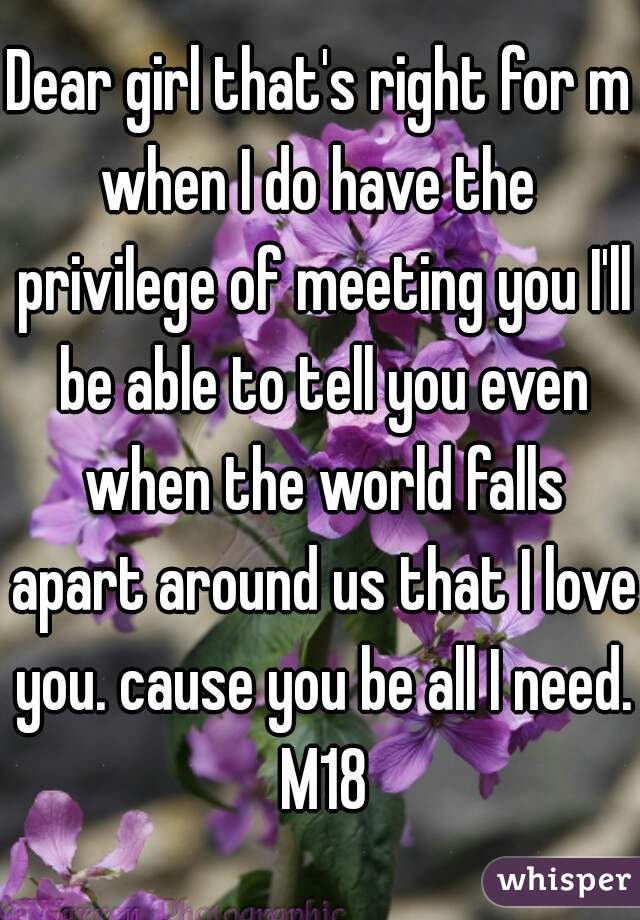 Dear girl that's right for me when I do have the privilege of meeting you I'll be able to tell you even when the world falls apart around us that I love you. cause you be all I need. M18