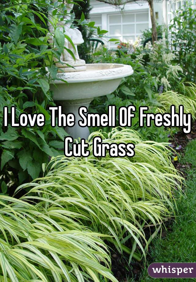 I Love The Smell Of Freshly Cut Grass