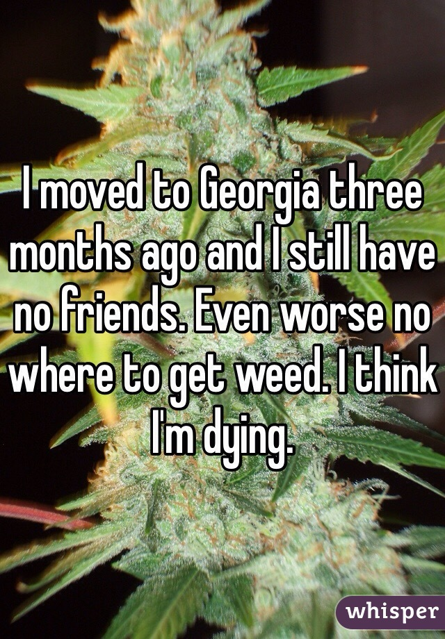 I moved to Georgia three months ago and I still have no friends. Even worse no where to get weed. I think I'm dying.