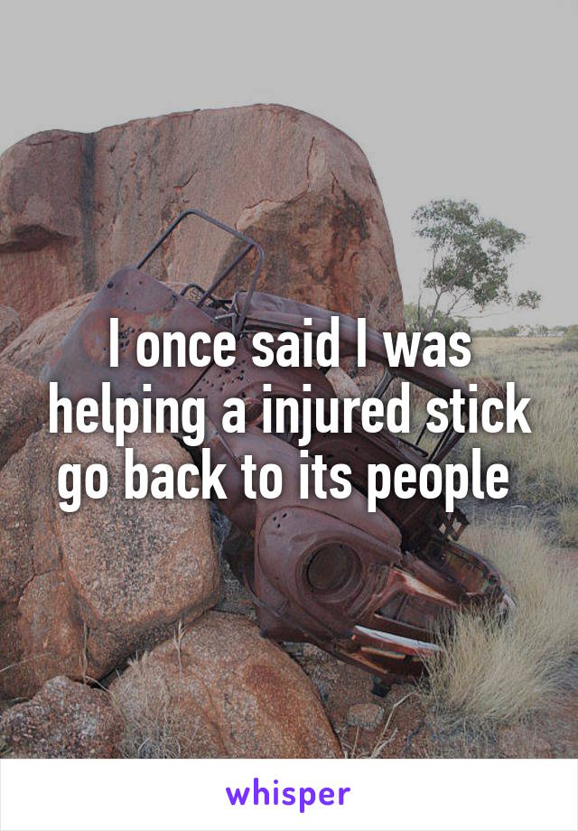 I once said I was helping a injured stick go back to its people