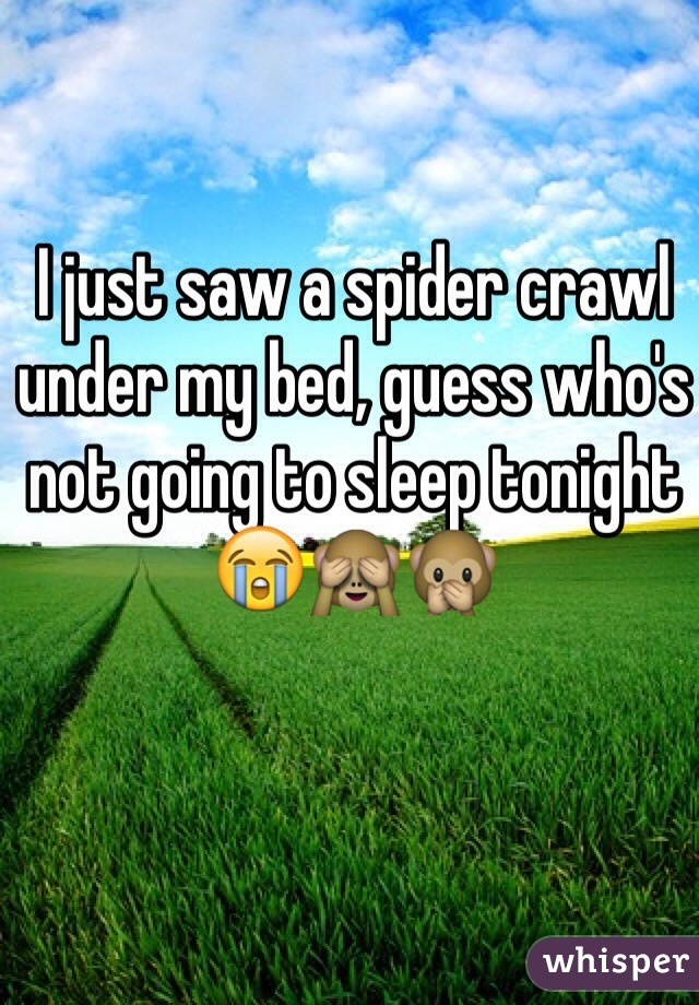 I just saw a spider crawl under my bed, guess who's not going to sleep tonight😭🙈🙊