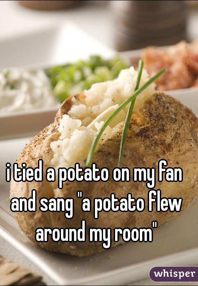 "i tied a potato on my fan and sang ""a potato flew around my room"""