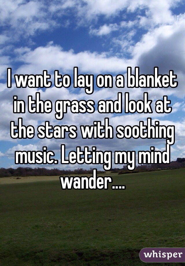 I want to lay on a blanket in the grass and look at the stars with soothing music. Letting my mind wander....