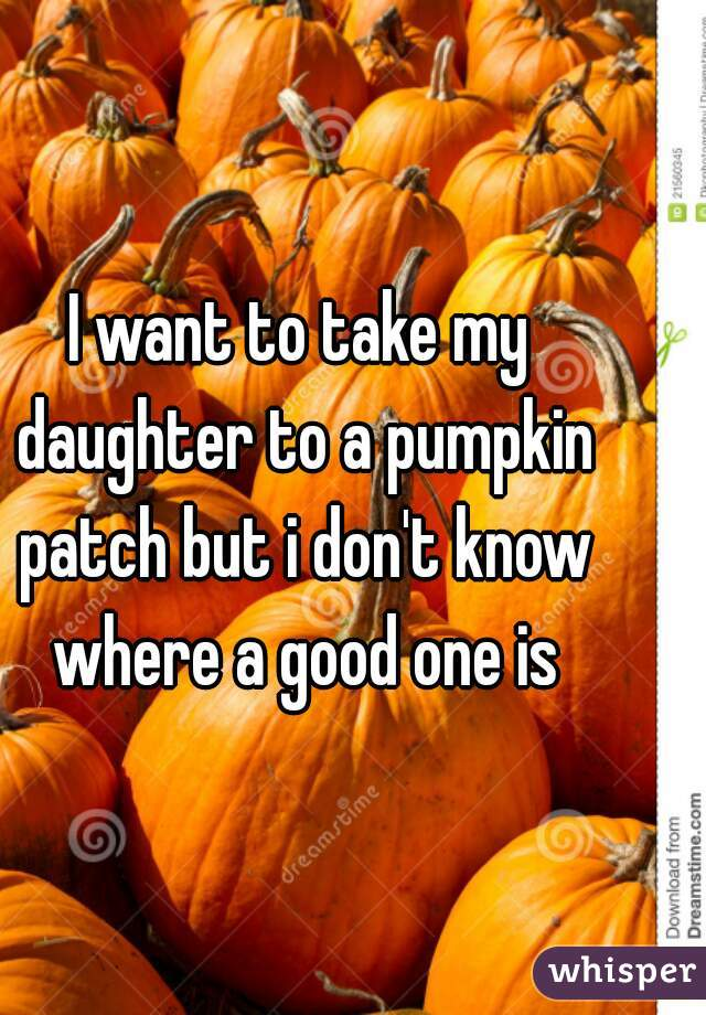 I want to take my daughter to a pumpkin patch but i don't know where a good one is