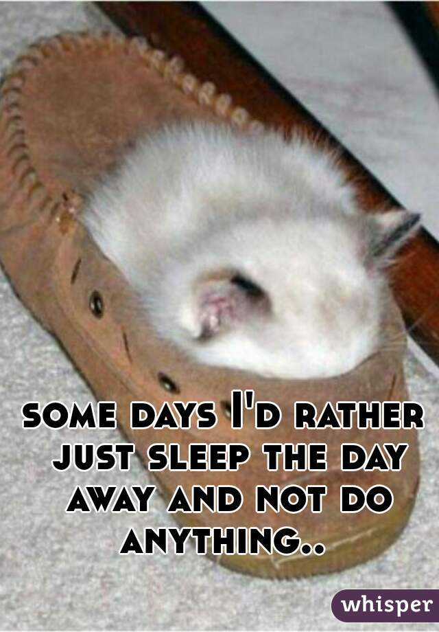 some days I'd rather just sleep the day away and not do anything..