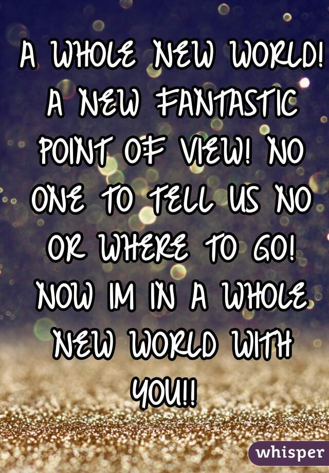 A WHOLE NEW WORLD! A NEW FANTASTIC POINT OF VIEW! NO ONE TO TELL US NO OR WHERE TO GO! NOW IM IN A WHOLE NEW WORLD WITH YOU!!