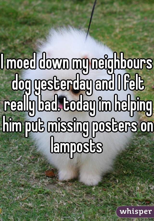 I moed down my neighbours dog yesterday and I felt really bad. today im helping him put missing posters on lamposts