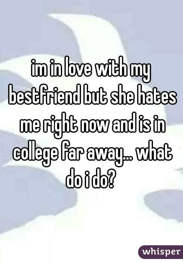 im in love with my bestfriend but she hates me right now and is in college far away... what do i do?