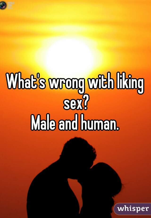 What's wrong with liking sex?  Male and human.