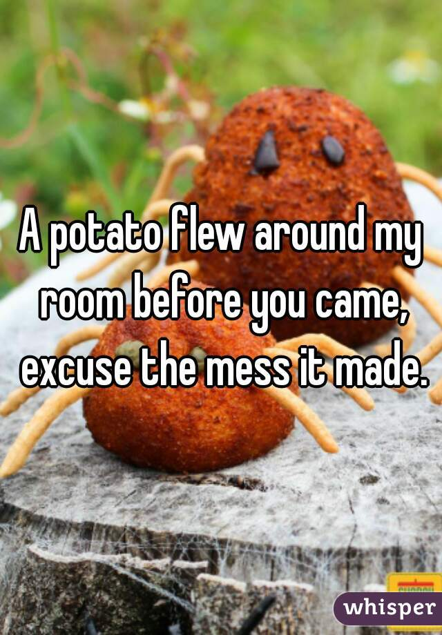 A potato flew around my room before you came, excuse the mess it made.