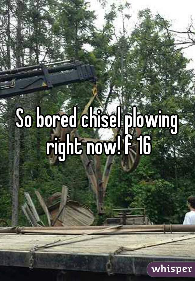 So bored chisel plowing right now! f 16
