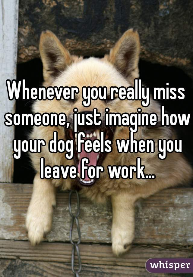 Whenever you really miss someone, just imagine how your dog feels when you leave for work...