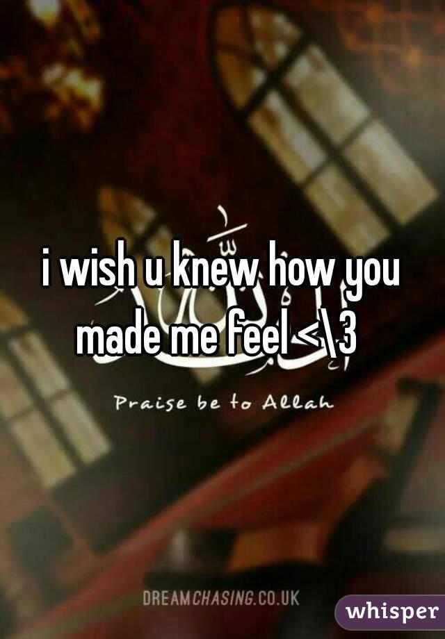i wish u knew how you made me feel <\3