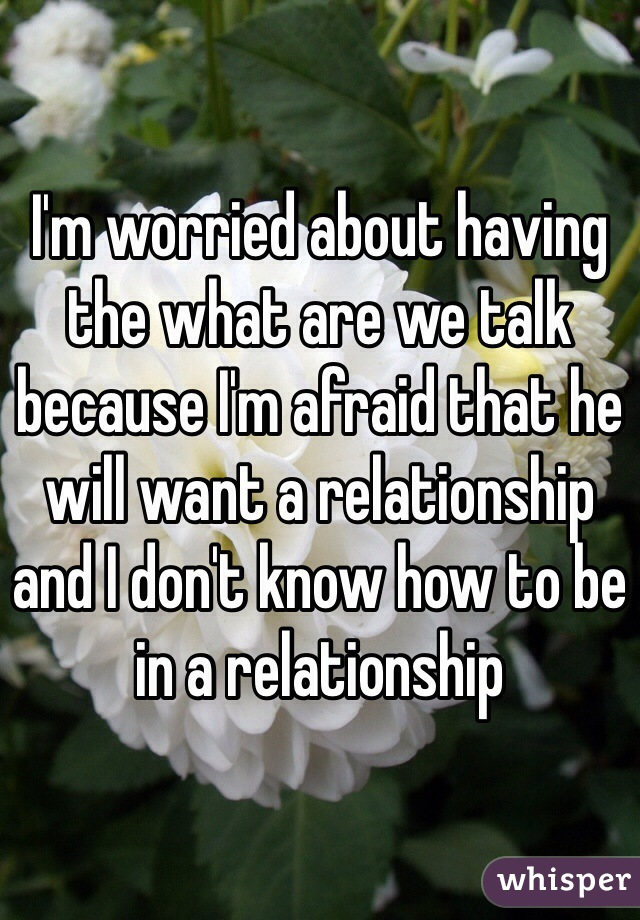 I'm worried about having the what are we talk because I'm afraid that he will want a relationship and I don't know how to be in a relationship