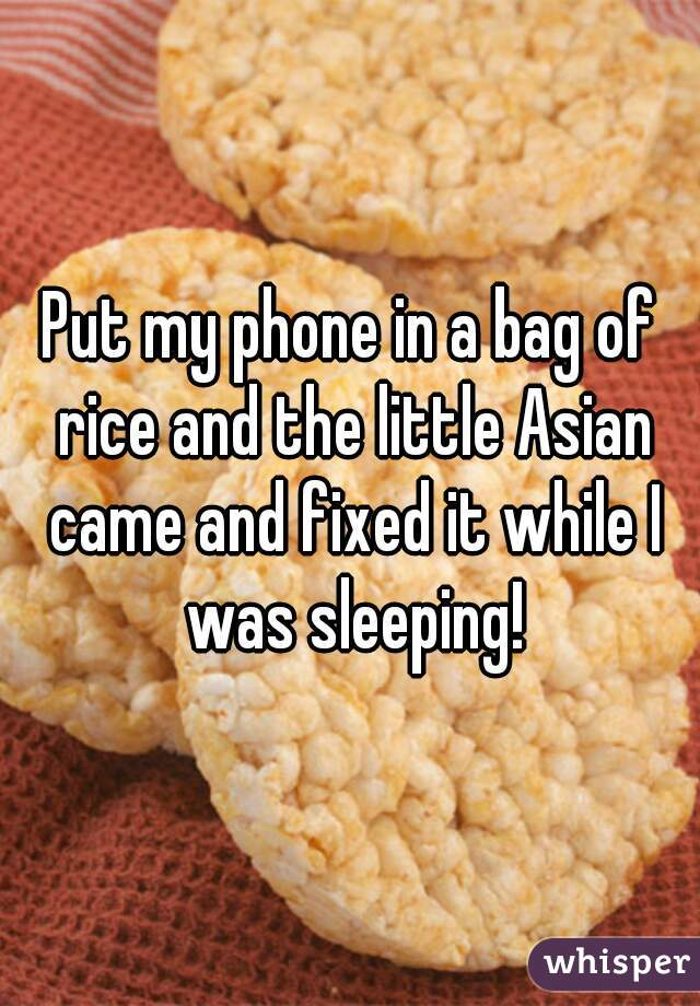Put My Phone In A Bag Of Rice And The Little Asian Came Fixed It