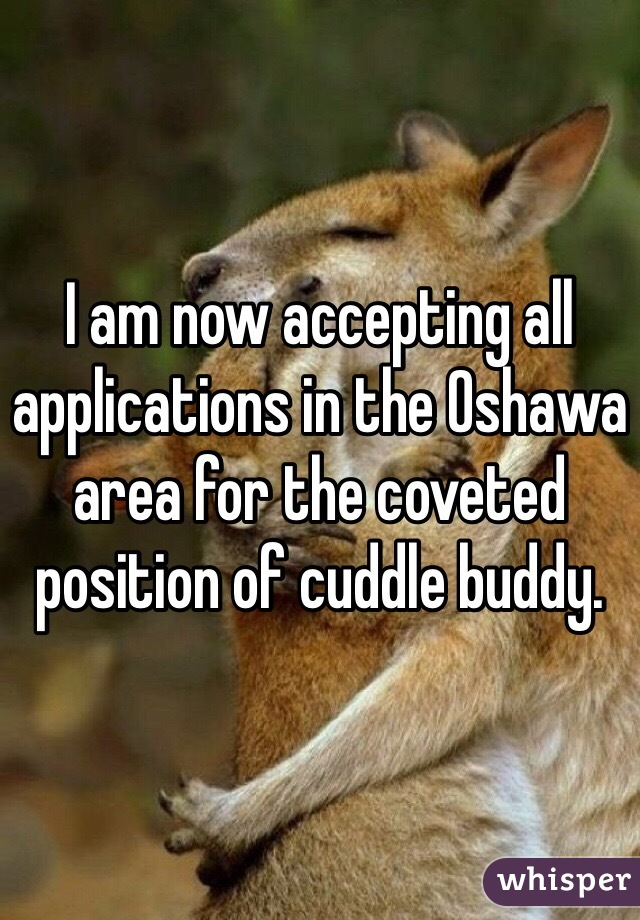 I am now accepting all applications in the Oshawa area for the coveted position of cuddle buddy.