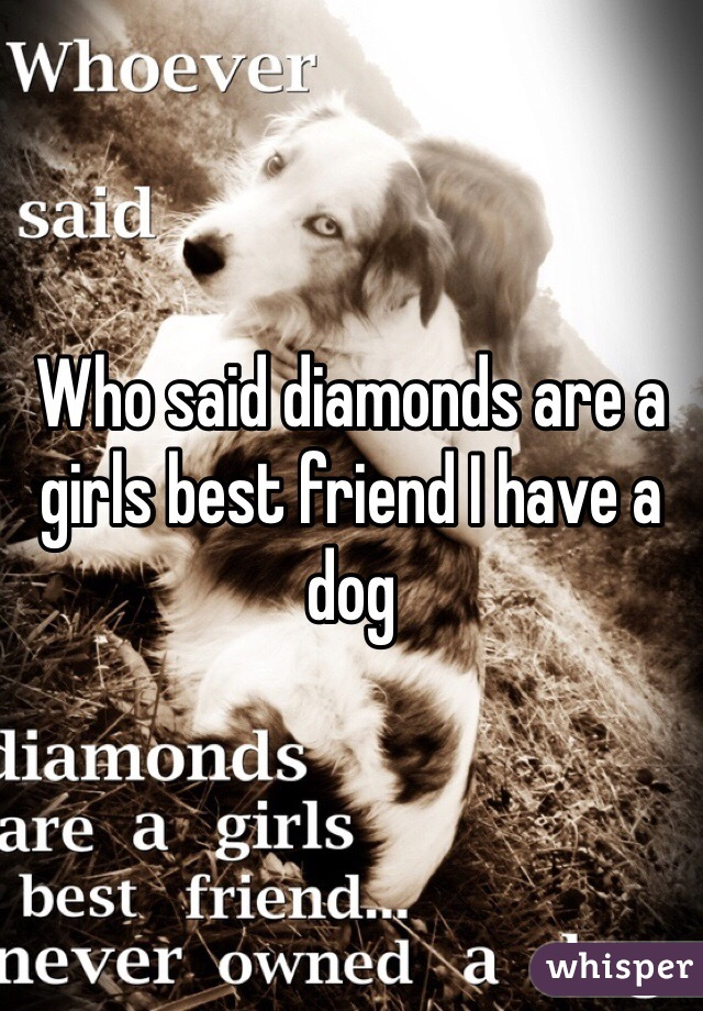 Who said diamonds are a girls best friend I have a dog