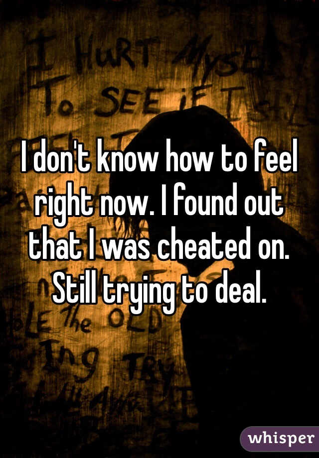 I don't know how to feel right now. I found out that I was cheated on. Still trying to deal.