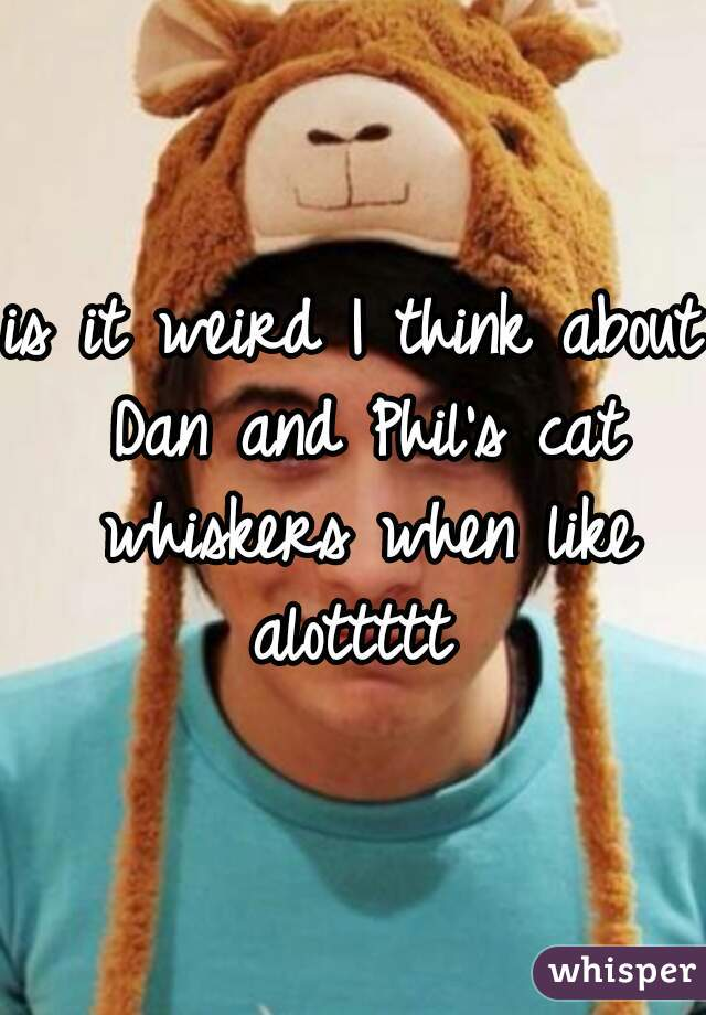 is it weird I think about Dan and Phil's cat whiskers when like alottttt