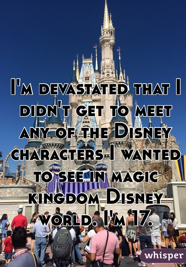 I'm devastated that I didn't get to meet any of the Disney characters I wanted to see in magic kingdom Disney world. I'm 17.