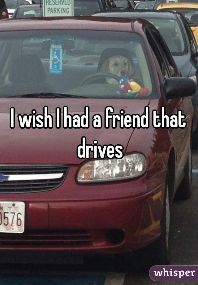 I wish I had a friend that drives