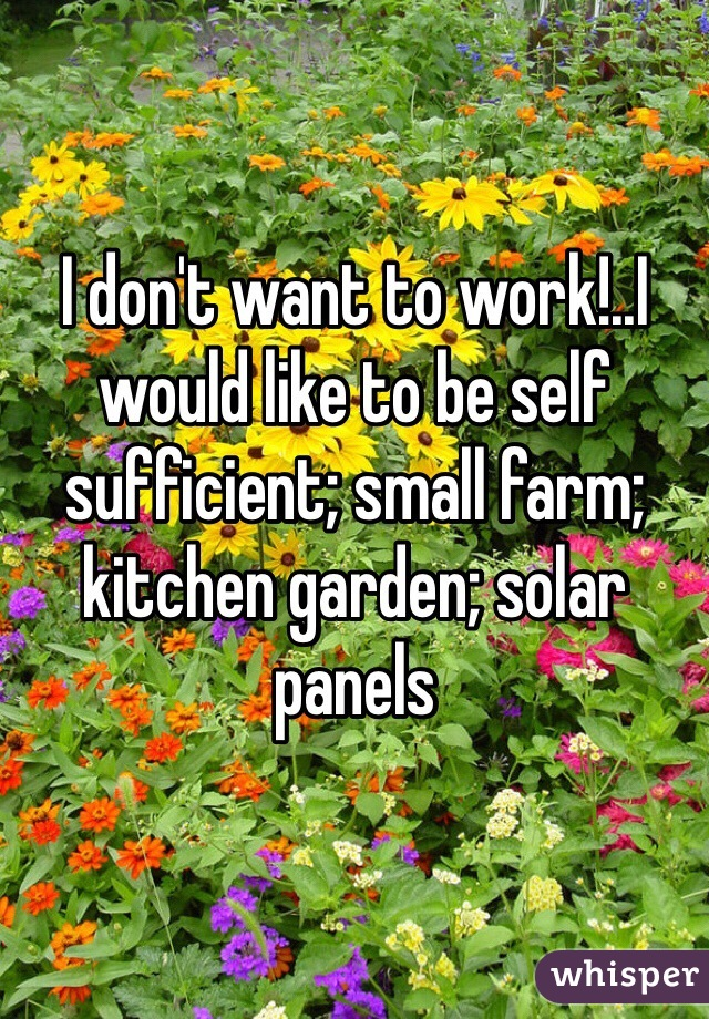 I don't want to work!..I would like to be self sufficient; small farm; kitchen garden; solar panels