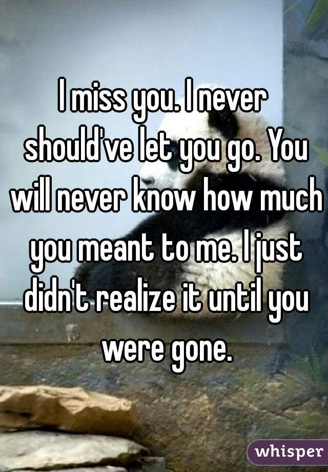 I miss you. I never should've let you go. You will never know how much you meant to me. I just didn't realize it until you were gone.