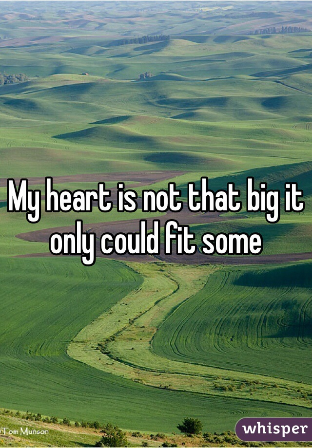 My heart is not that big it only could fit some