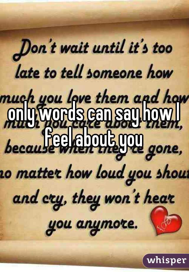 only words can say how I feel about you