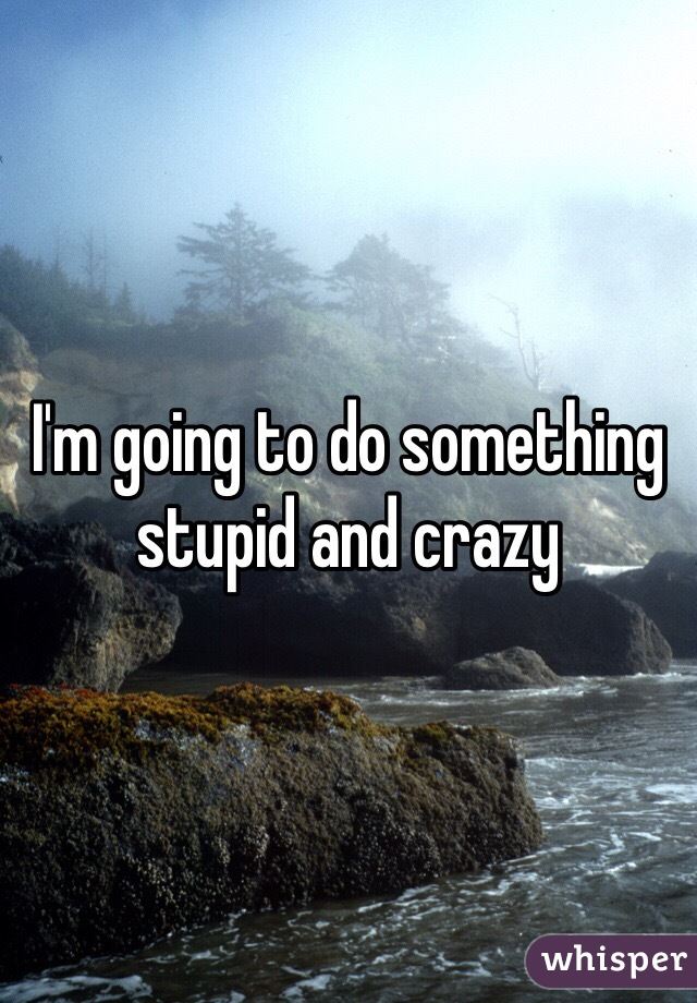 I'm going to do something stupid and crazy