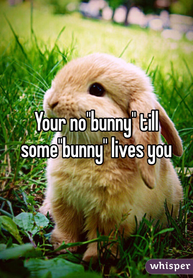 """Your no""""bunny"""" till some""""bunny"""" lives you"""