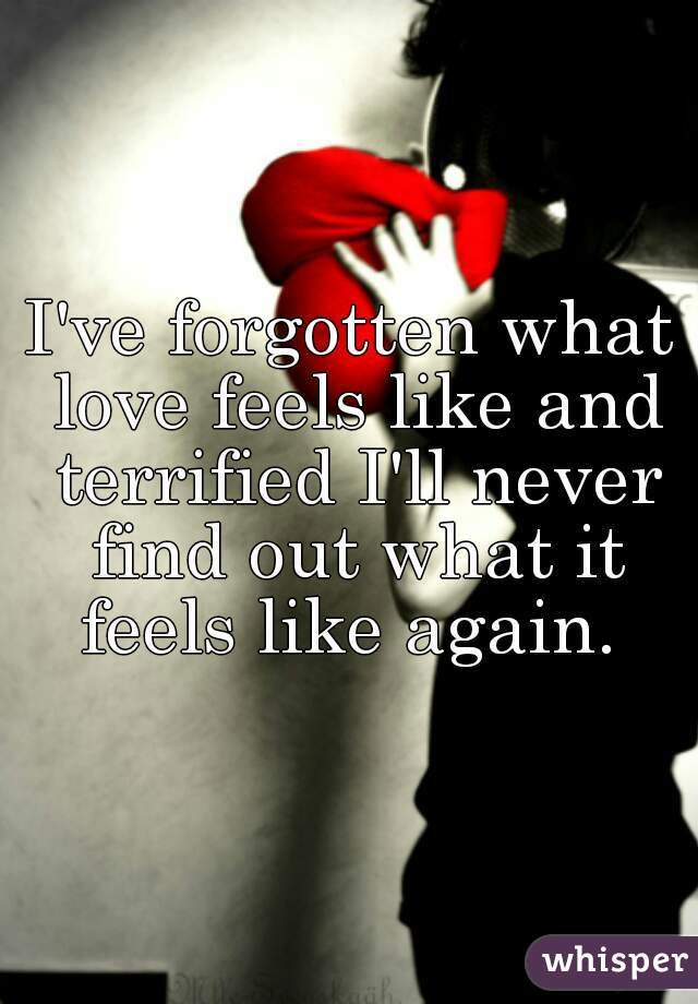 I've forgotten what love feels like and terrified I'll never find out what it feels like again.