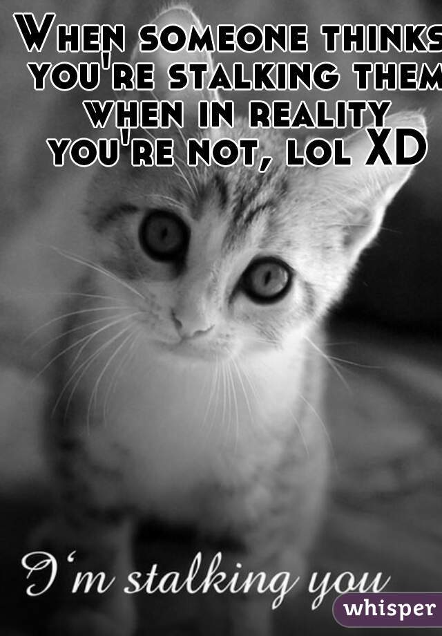 When someone thinks you're stalking them when in reality you're not, lol XD