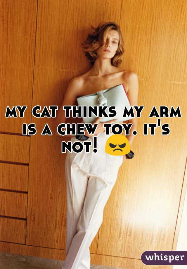 my cat thinks my arm is a chew toy. it's not! 😠