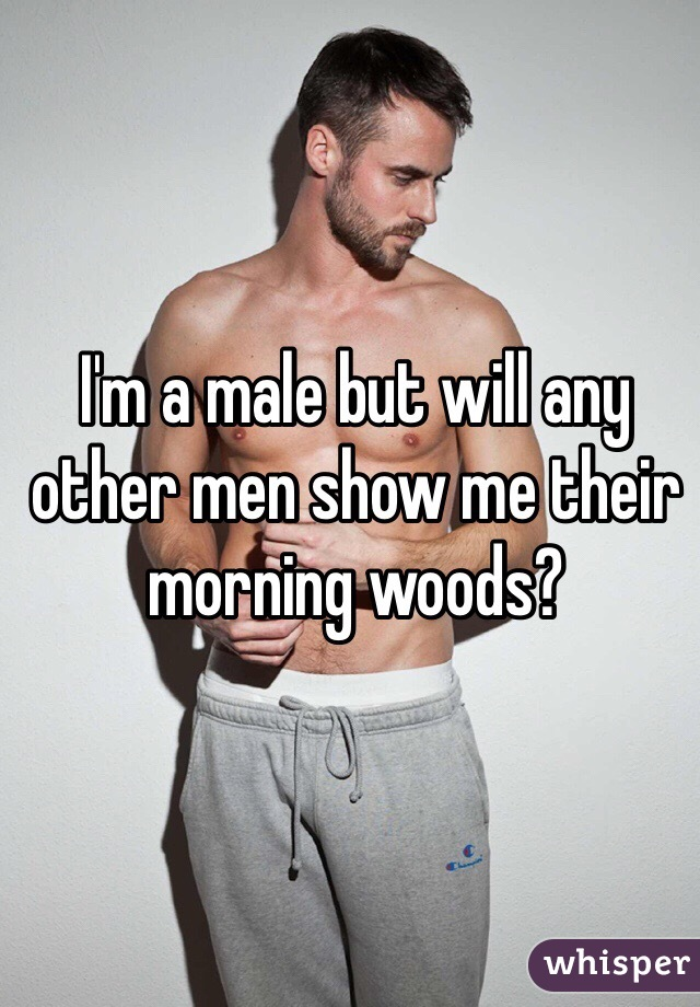 I'm a male but will any other men show me their morning woods?
