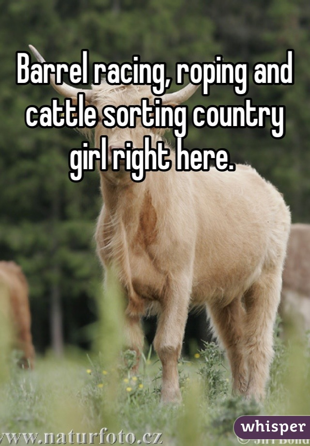 Barrel racing, roping and cattle sorting country girl right here.