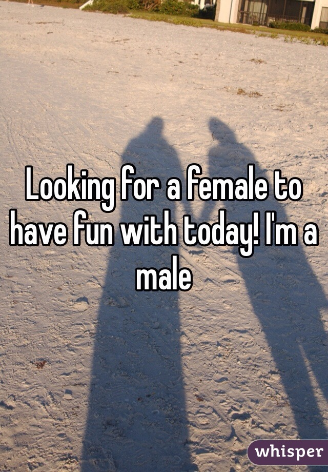 Looking for a female to have fun with today! I'm a male