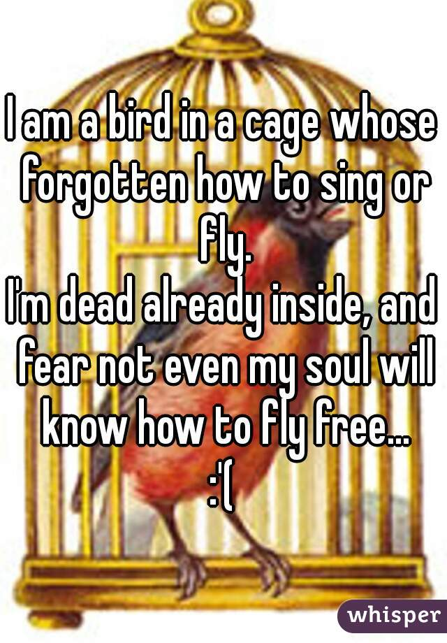 I am a bird in a cage whose forgotten how to sing or fly. I'm dead already inside, and fear not even my soul will know how to fly free... :'(