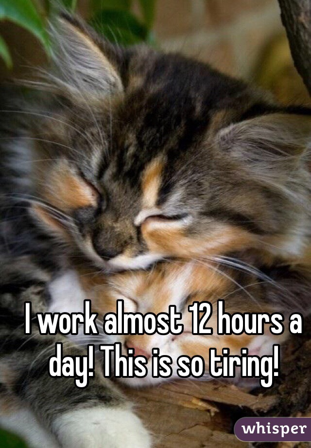 I work almost 12 hours a day! This is so tiring!