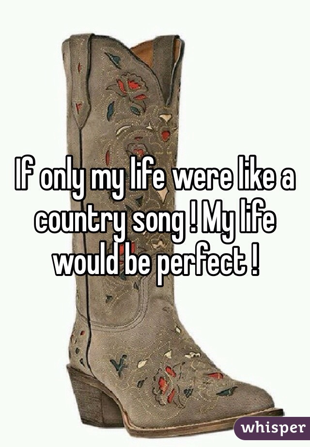 If only my life were like a country song ! My life would be perfect !