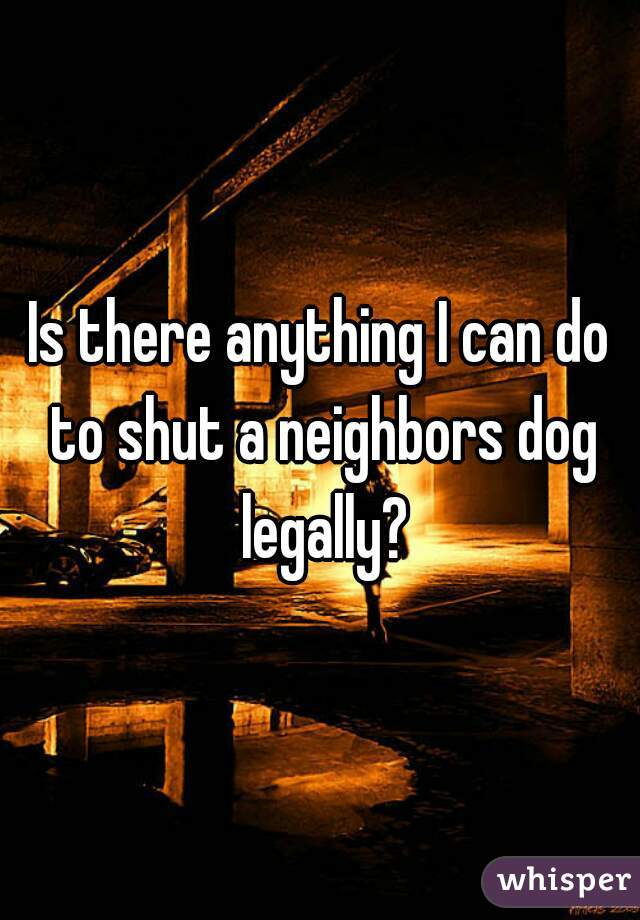 Is there anything I can do to shut a neighbors dog legally?